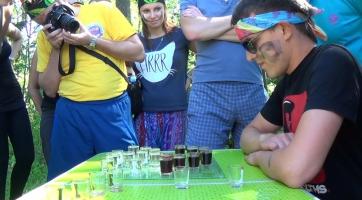 Алкошашки/шахматы