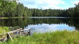 Черные озера